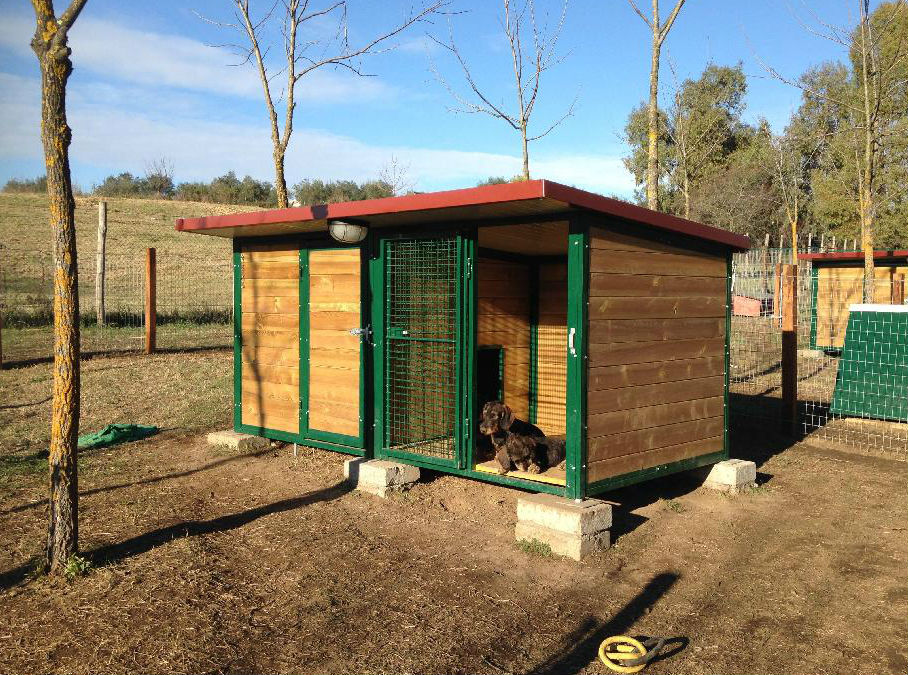 Green house doppio metalmax for Box coibentati per cani usati